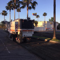anrak trucks and palm trees